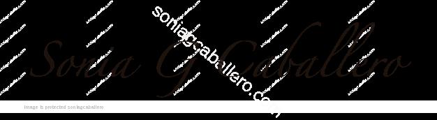 Firma Sonia G Caballero